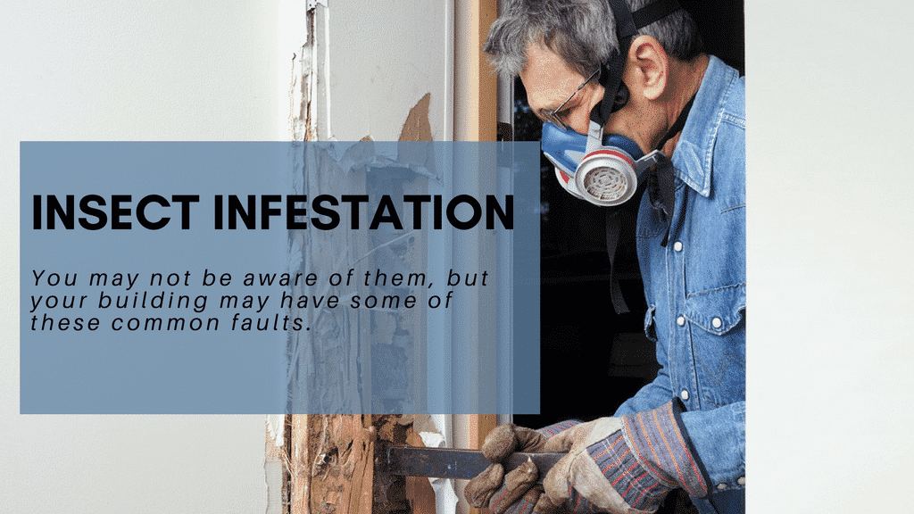 7 Common Faults Seen in Building Inspections -