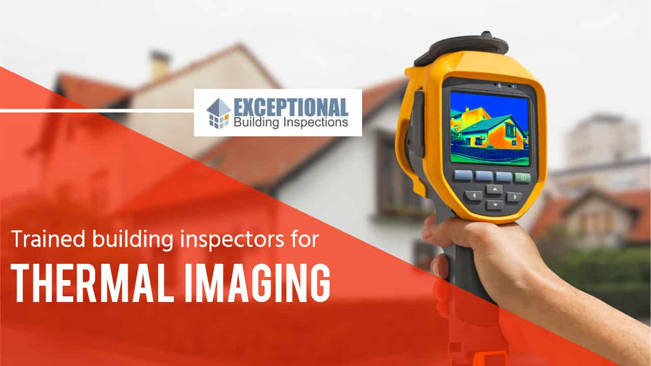 What You Need to Know about Thermal Imaging 7
