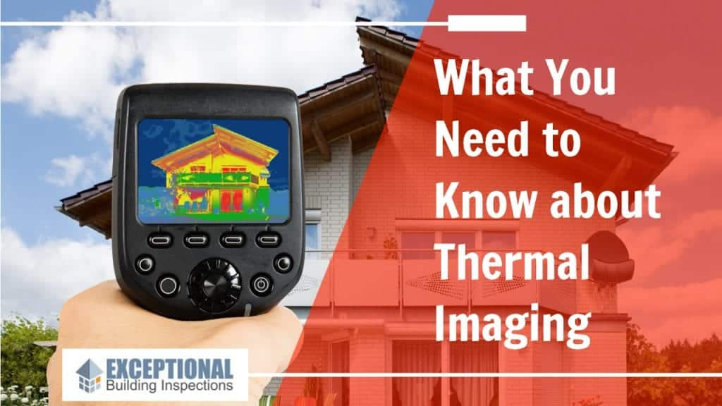 What You Need to Know about Thermal Imaging 1