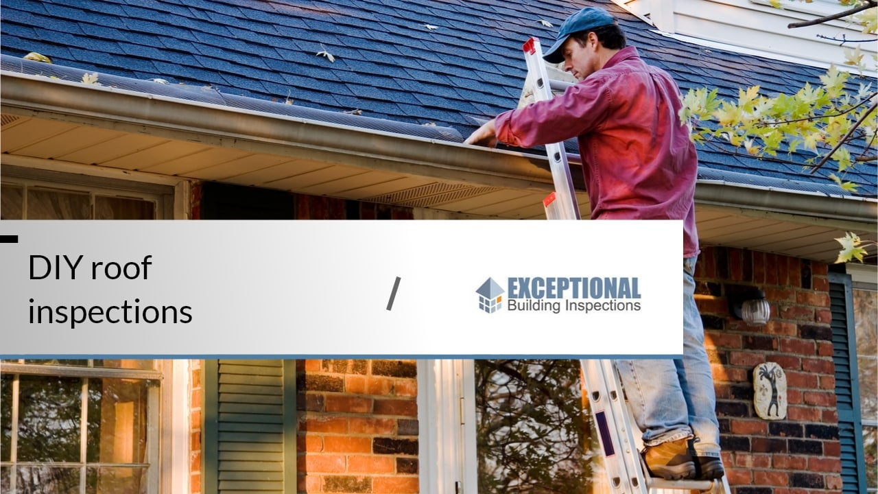 What to Expect From a Professional Roof Inspection -