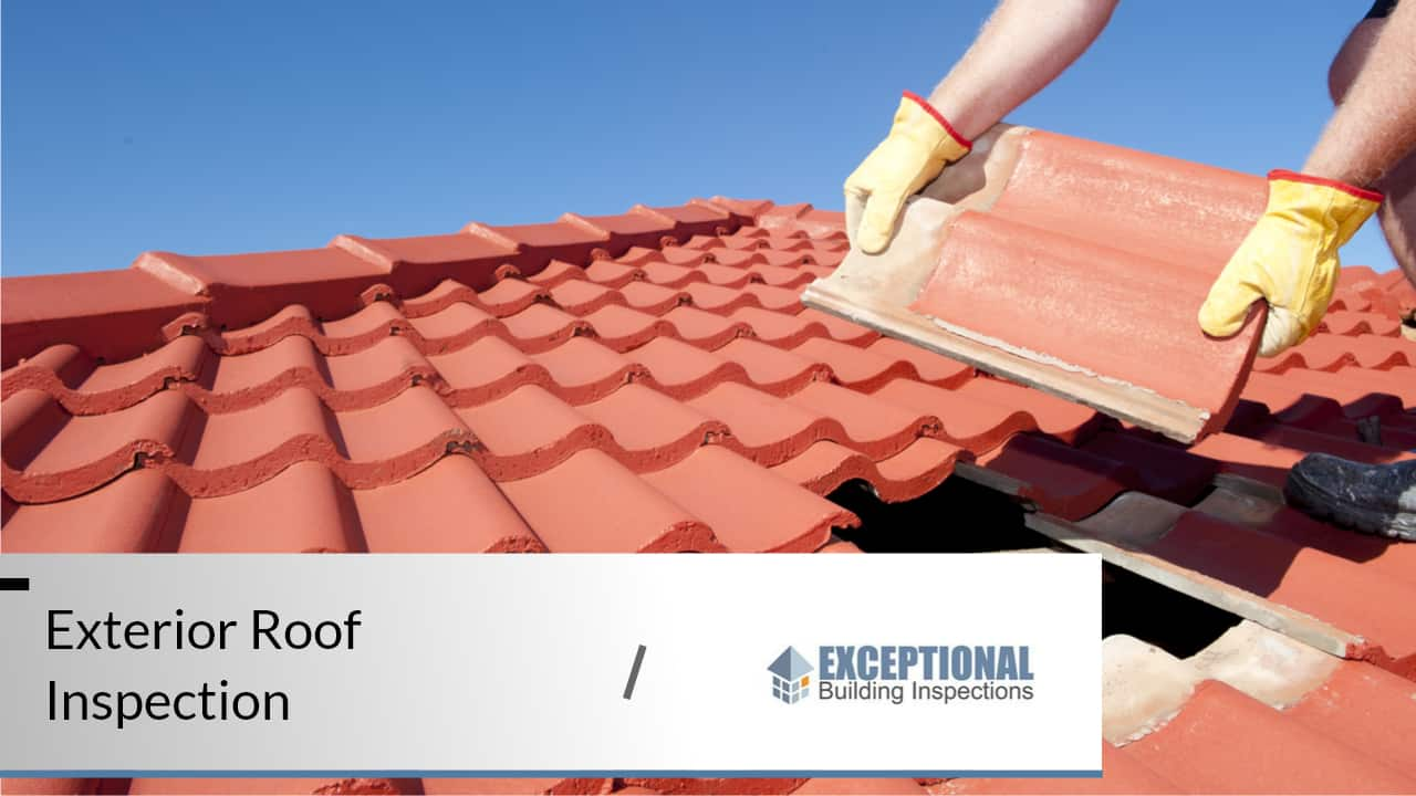 What to Expect From a Professional Roof Inspection 4