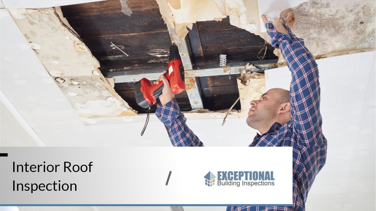 What to Expect From a Professional Roof Inspection 5