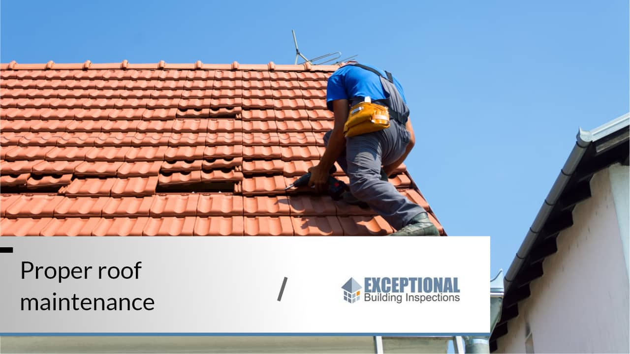 What to Expect From a Professional Roof Inspection 2
