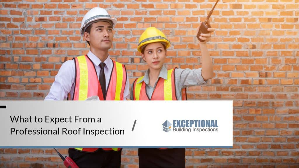 What to Expect From a Professional Roof Inspection 1