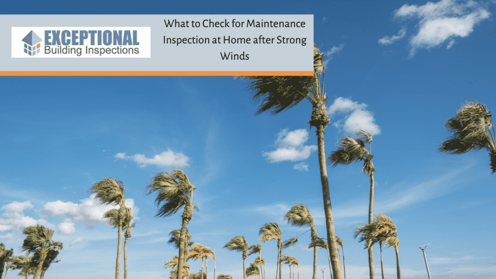 What to Check for Maintenance Inspection at Home after Strong Winds