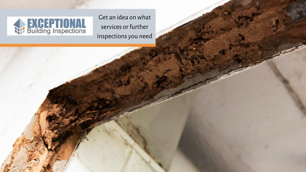 Get an idea on what services or further inspections you need